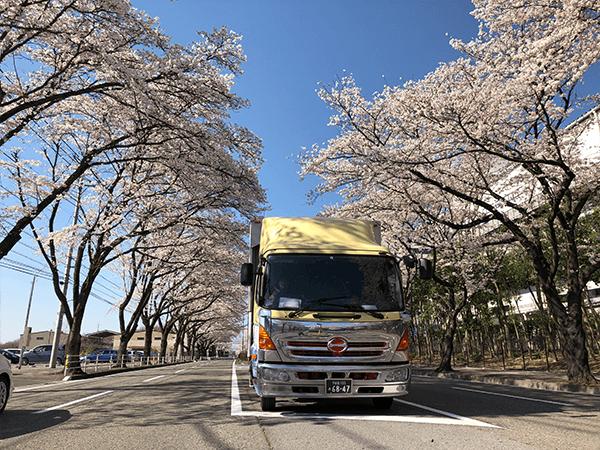 (有)田野辺運送店